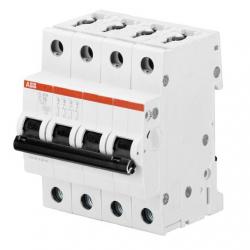 Interruptor automático S204-C10