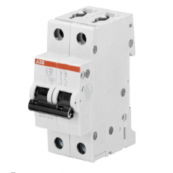 Interruptor automático S202-C10